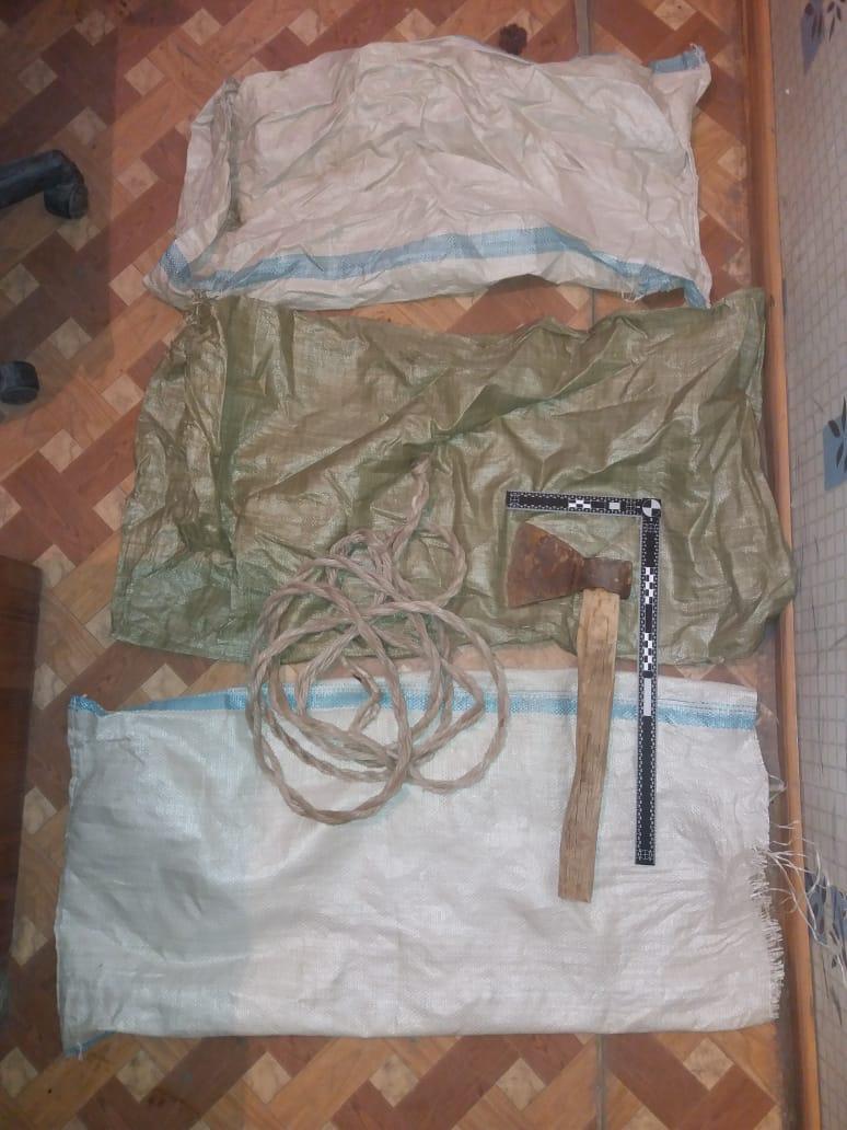 В Атырау двое мужчин занимались отстрелом лошадей