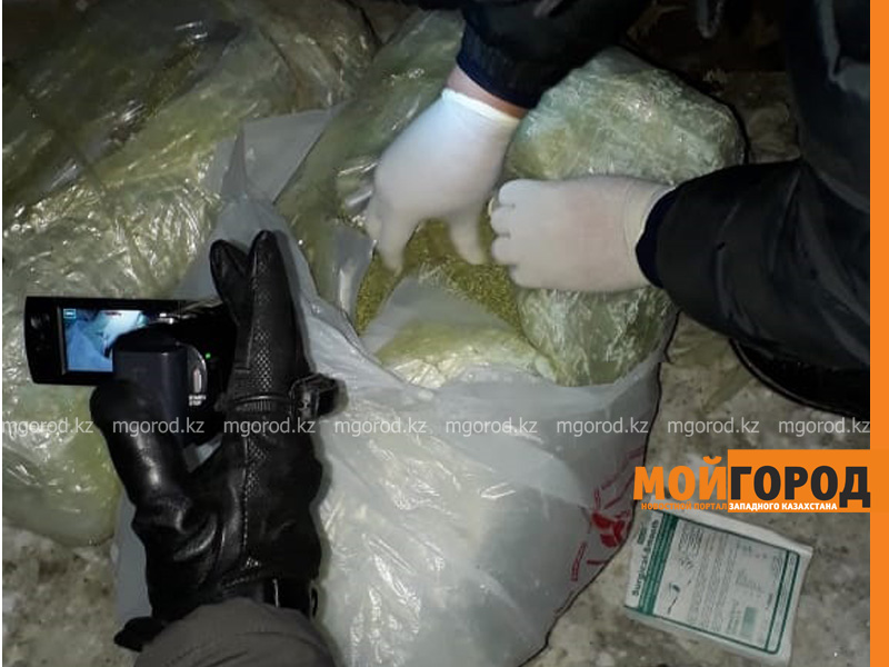 Новости Актобе - Полицейские задержали преступную группировку, занимавшуюся сбытом наркотиков