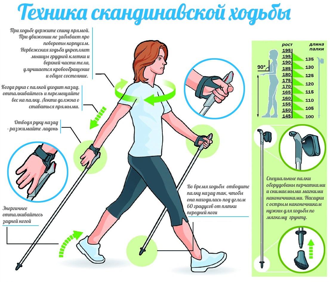 Новости Актау - Вам не надо бегать, просто ходите : сбросим вес по всем правилам