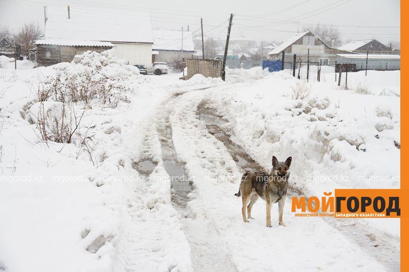 33 села в Актюбинской области находятся в зоне возможного подтопления