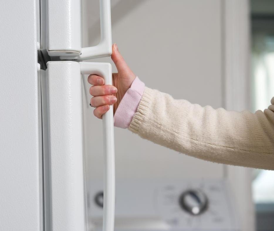 Новости PRO Ремонт - Как восстановить уплотнитель холодильника