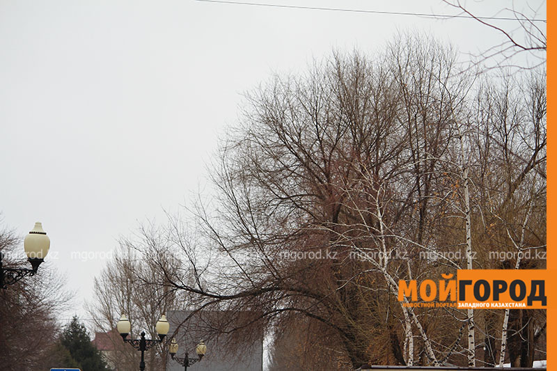 Новости - Погода на 20 марта
