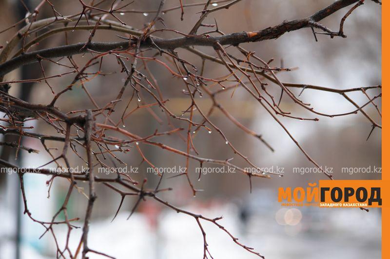 Новости - Погода на 2 декабря