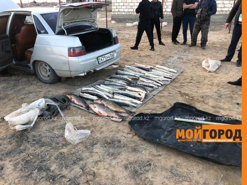 85 килограммов осетрины обнаружили полицейские у браконьеров в пригороде Атырау