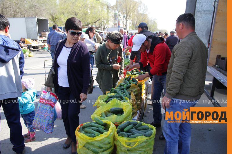 В Уральске в день выборов пройдут ярмарки сельхозтоваропроизводителей