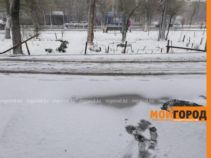 Новости Уральск - Гололед и туман ожидаются в ЗКО