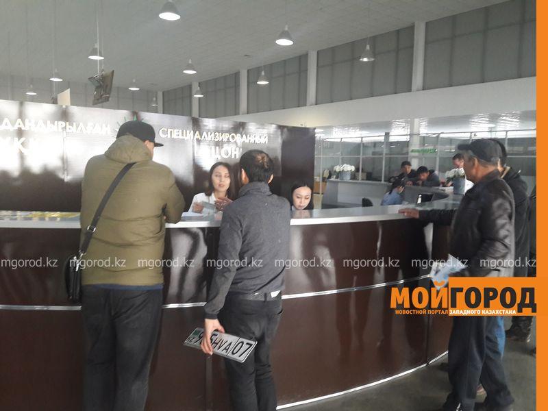 В Уральске можно оформить водительское удостоверение из дома