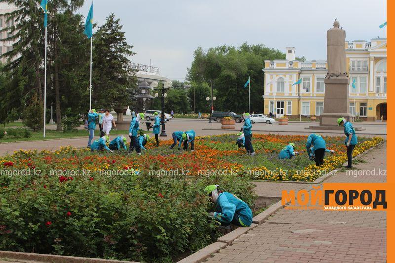 Уральск украсят цветниками в виде ковров с орнаментами