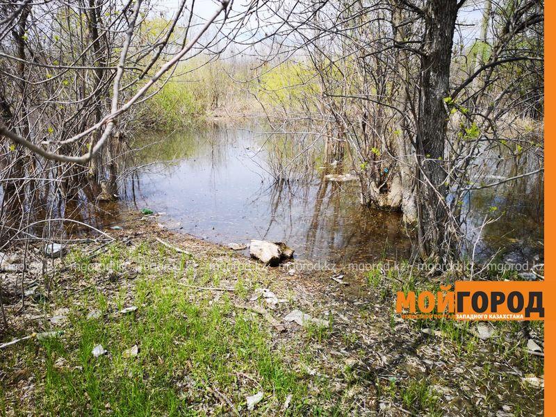 Новости Уральск - Несколько тонн шкур КРС гниют вблизи Уральска