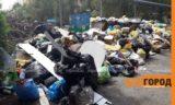 Уже крысы бегают: жители Аксая жалуются на горы мусора в городе (фото, видео)