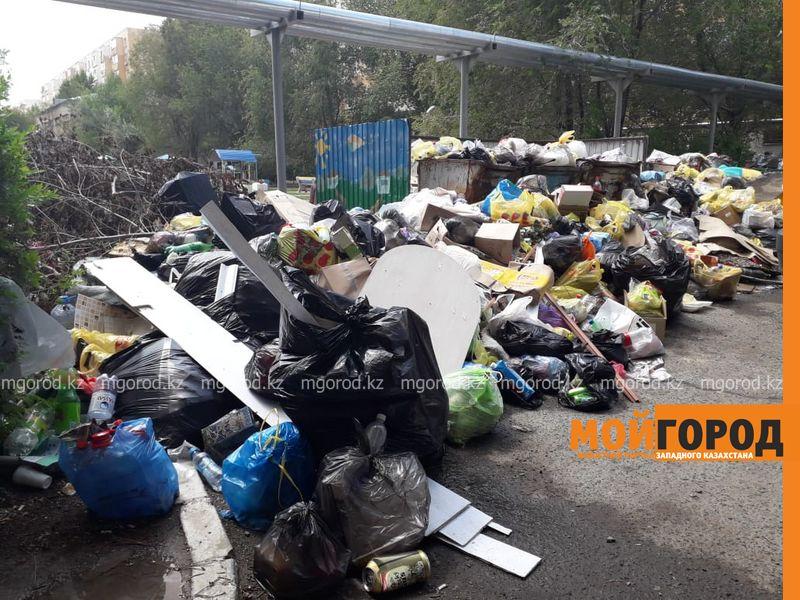 Новости Уральск - Уже крысы бегают: жители Аксая жалуются на горы мусора в городе (фото, видео)
