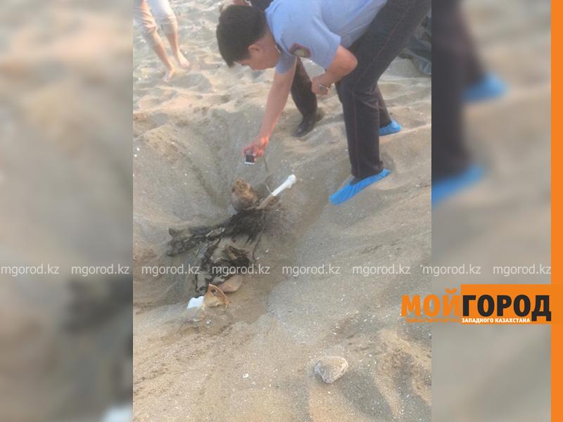 На побережье Каспия обнаружен скелет человека