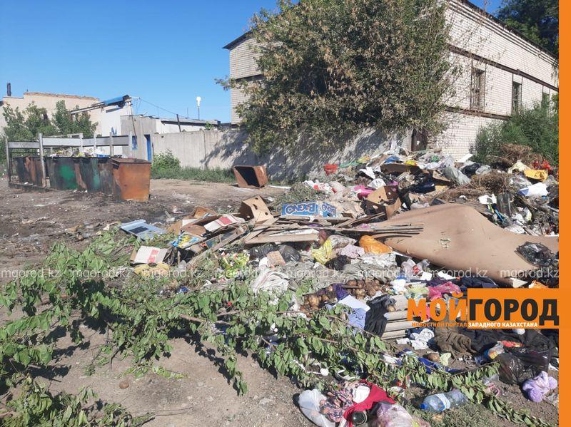 Более тысячи жителей Атырау привлечены к адмответственности за выброс мусора в неположенном месте