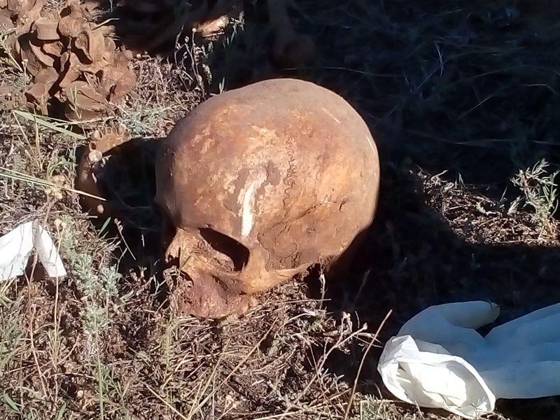 Скелет человека нашли в ЗКО