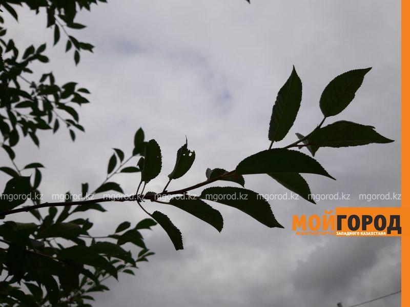 Новости - Погода на 13 сентября