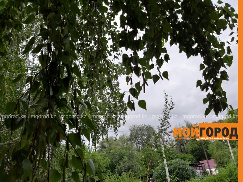Новости - Погода на 3 июля