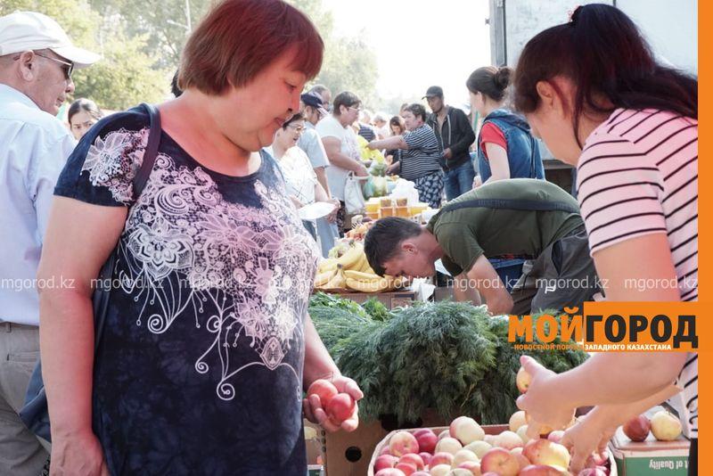 Более 65 тонн продукции было продано на сельхозярмарке в Уральске
