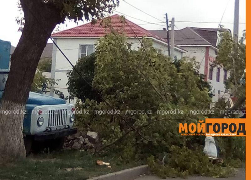 Новости Уральск - Ураганный ветер в ЗКО повалил деревья, разбил автомобили и сорвал кровлю школ (фото)