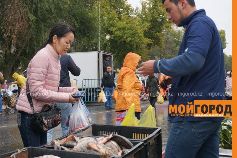 Новости Уральск - Более 32 тонн овощей и фруктов было продано на сельхозярмарке в Уральске