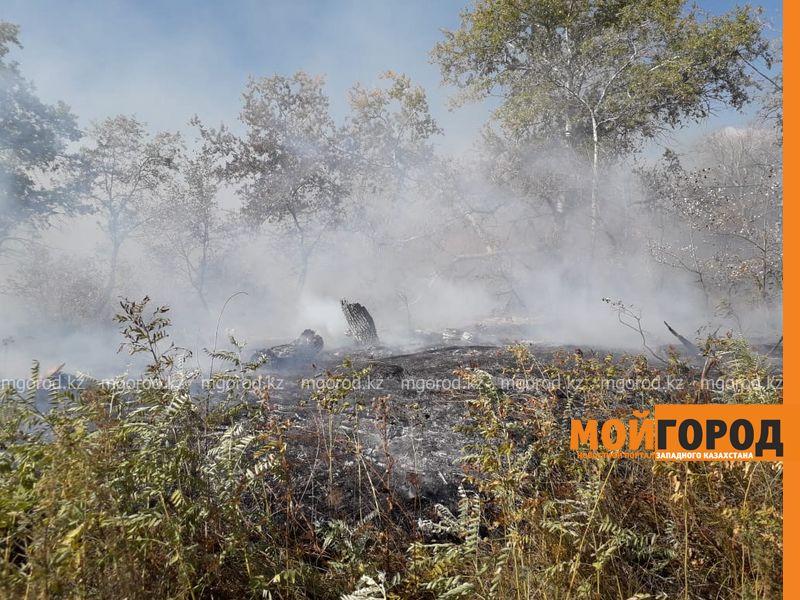 Второй день горит сухая трава в Уральске
