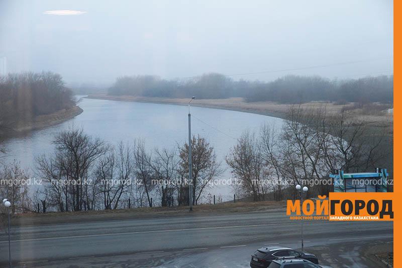 Туман ожидается в ЗКО