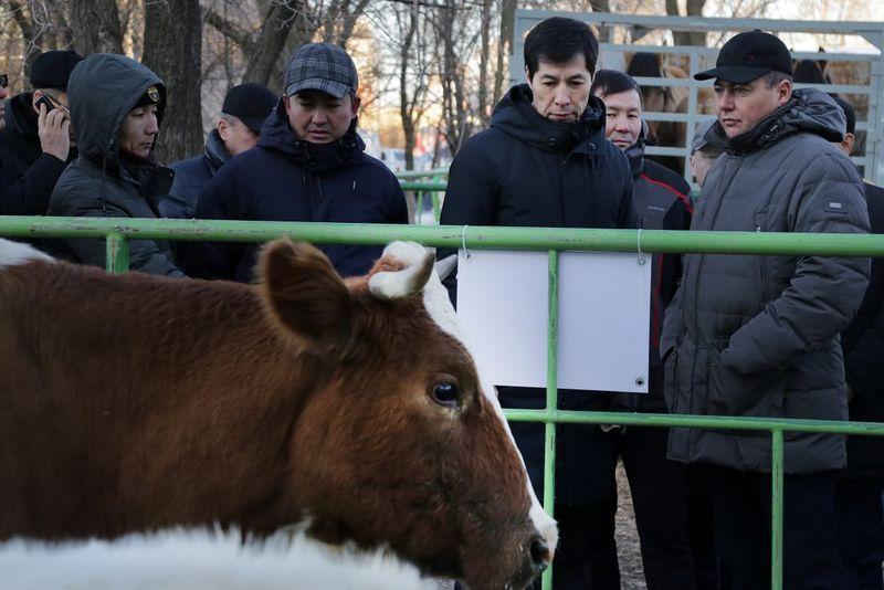 Выставка сельхозтехники прошла в ЗКО