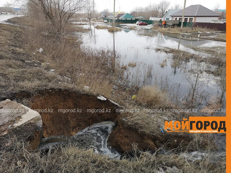 Нечистотами подтопило дачи в Уральске (фото, видео)