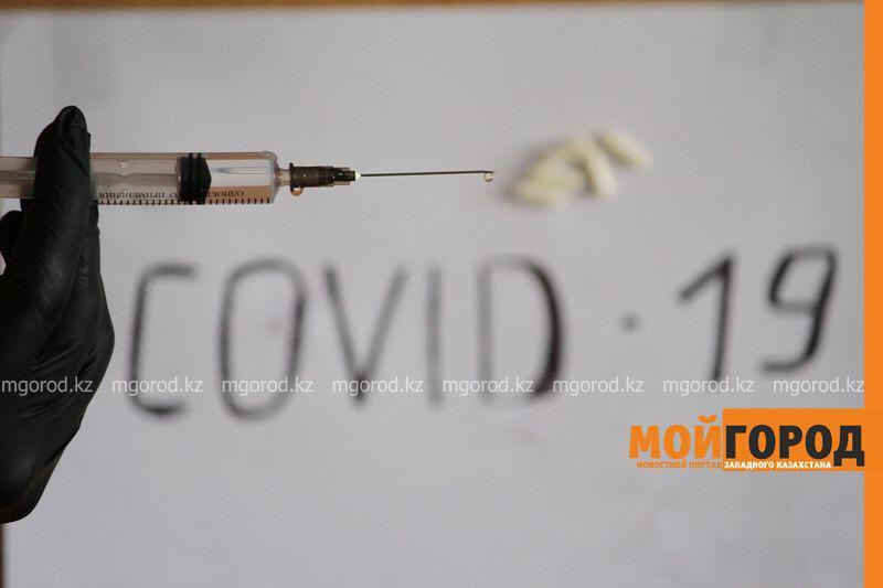 Глава ВОЗ: Для полного прекращения распространения Covid-19 необходима вакцина Глава ВОЗ: Для полного прекращения распространения Covid-19 необходима вакцина