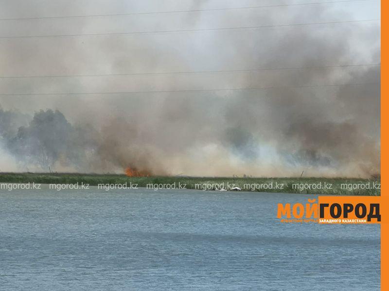 Сухая трава горит на набережной Чагана в Уральске (фото) Набережная Чагана горит в Уральске (фото)