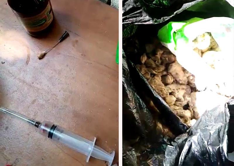 Житель Актобе устроил наркопритон на даче (видео) Житель Актобе устроил наркопритон на даче (видео)
