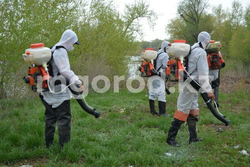 Комаров будут травить новым препаратом в Атырау Комаров будут травить новым препаратом в Атырау