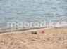 Три человека утонули в выходные в ЗКО