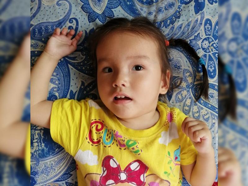 Казахстанцы собрали деньги на лечение трехлетней девочке из Уральска Больной малышке из Уральска не хватает 194 тысячи тенге на лечение