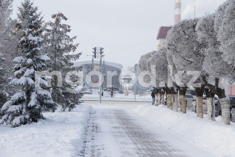 Раннюю, но теплую зиму прогнозируют в Казахстане Раннюю, но теплую зиму прогнозируют в Казахстане