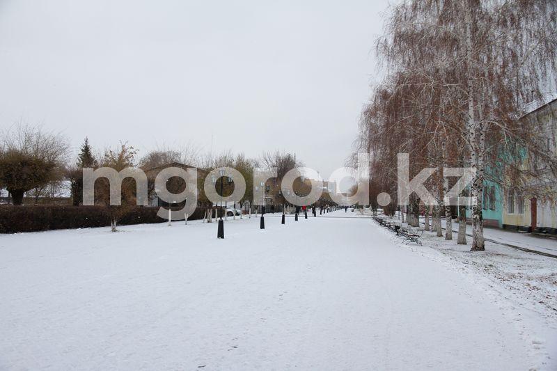 Погода на 23 ноября Гололед и туман ожидаются в ЗКО