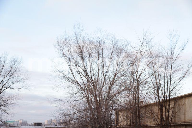 Погода на 17 ноября Усиление ветра ожидается в ЗКО