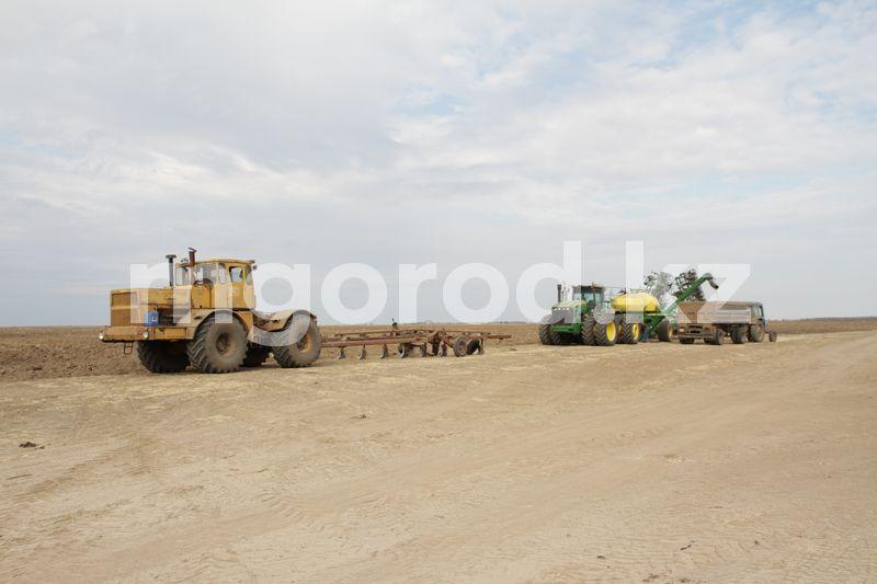 Токаев поручил ввести запрет на аренду земель сельхозназначения для иностранцев 343 крестьянских хозяйств функционирует в Бурлинском районе