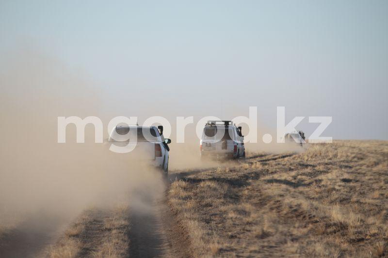 Популяция сайгаков в ЗКО превысила 217 тысяч голов (фото, видео) Автономная станция по защите сайгаков построена в ЗКО