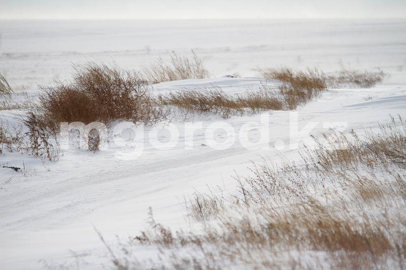Сильный ветер ожидается в ЗКО Погода на 13 января