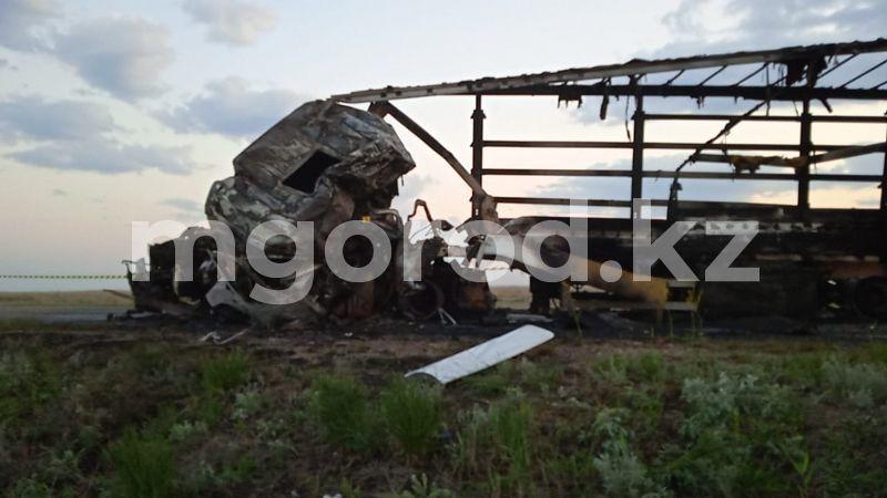 Два человека и 39 лошадейпогибли при столкновении большегрузов в ЗКО (видео) 123