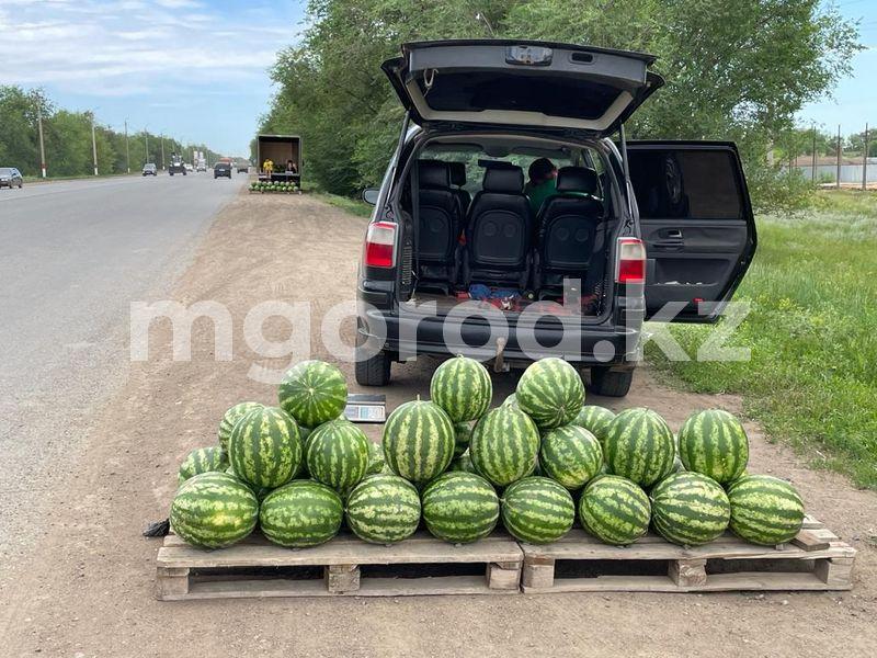 В Уральске начали продавать арбузы В Уральске начали продавать арбузы