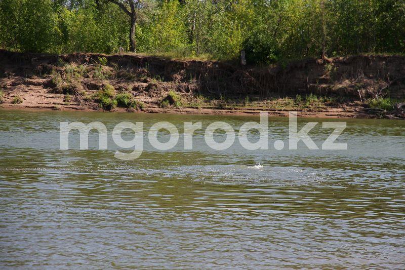 Труп неизвестной женщины нашли в реке в Уральске Труп неизвестной женщины нашли в реке в Уральске