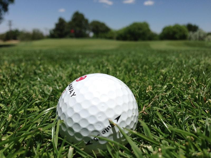 Учителей в Казахстане привлекали к чистке поля для гольфа Учителей в Казахстане привлекали к чистке поля для гольфа